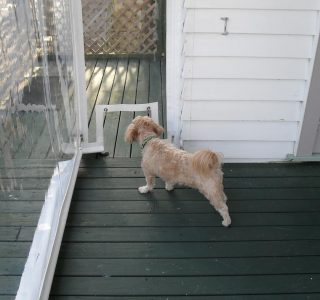 Hand Rolled Screens clear PVC dog door Residential 44 320x300 - Fixed Panel Screens / Wind Break