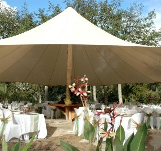 TMS Commercial 7 320x300 - Fixed Frame PVC Canopies (Tensioned Membrane Structure)